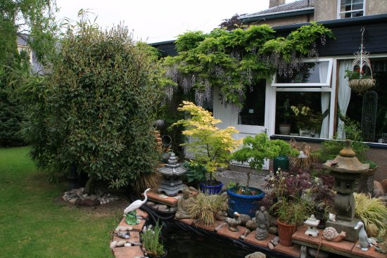 Greenlawns: Patio, koi pond and south facing garden with seating for you to relax and enjoy