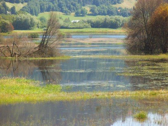 Steindorf, Austria: Das Moor oben