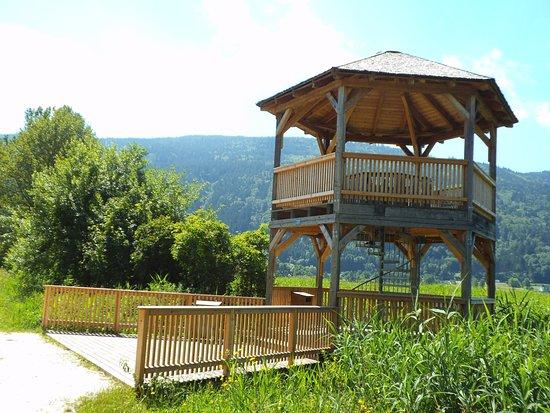 Steindorf, Austria: Aussichtsturm von Weg ins Moor