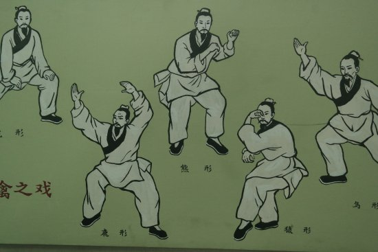 Beijing Traditional Chinese Medicines Museum of Beijing College of Traditional Chinese Medicine: wu xing, los cinco animales, la antesala del Tai Chi Chuan