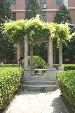 Beijing Traditional Chinese Medicines Museum of Beijing College of Traditional Chinese Medicine: los jardines de la universidad