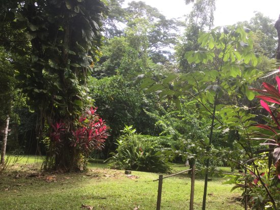DoceLunas Hotel, Restaurant & Spa: Le jardin
