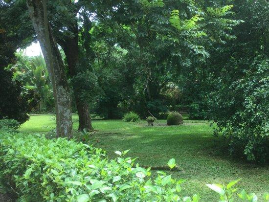 DoceLunas Hotel, Restaurant & Spa: Vue du jardin
