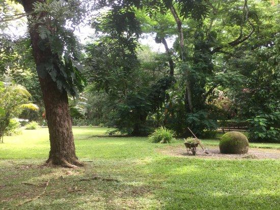 DoceLunas Hotel, Restaurant & Spa: Autre vue du jardin