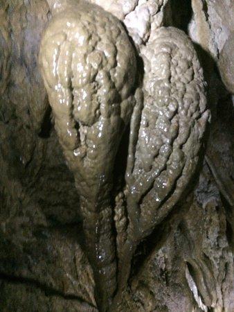 Bat Cave : photo7.jpg