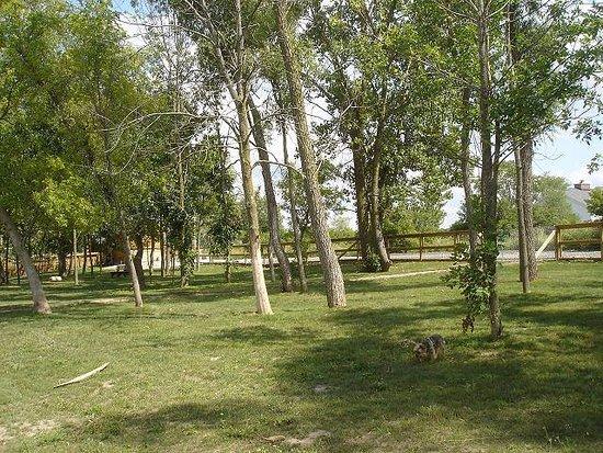 Davison, MI: Pretty park!