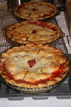 Harrison Mills, Canada: Famous home-made Cabin Fever Junction pies.