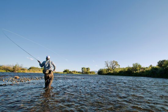 Fly fishing the madison river ennis montana picture of for Madison river fly fishing