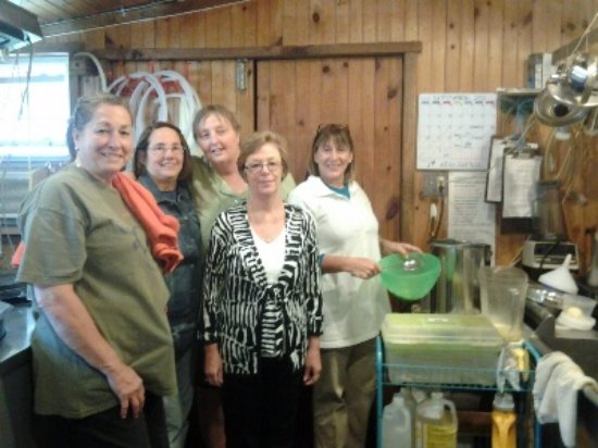Coopersburg, Pensilvania: cheese making class