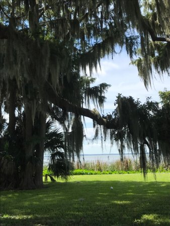 Venetian Gardens Park Leesburg Fl Top Tips Before You Go Tripadvisor