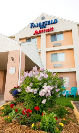 Fairfield Inn Duluth: flowers in bloom