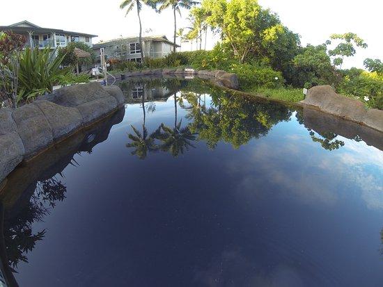 Westin Princeville Ocean Resort Villas : The quite pool (1 of 4)
