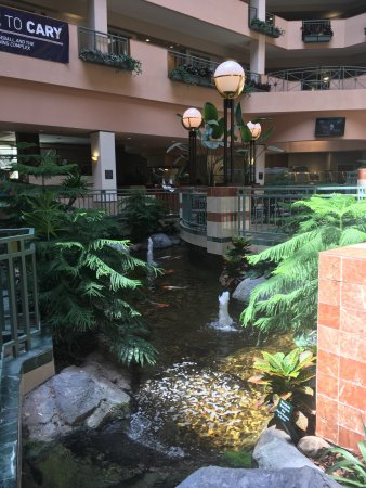 Embassy Suites by Hilton Raleigh - Durham/Research Triangle: photo0.jpg