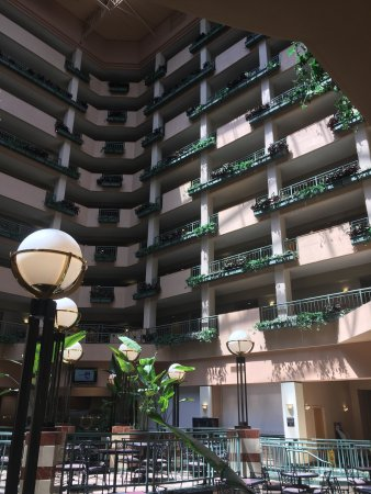 Embassy Suites by Hilton Raleigh - Durham/Research Triangle: photo2.jpg