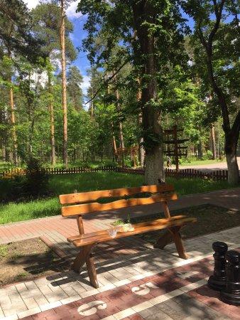 Сосновый Бор, Россия: photo0.jpg