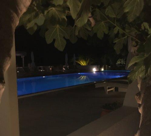 Pelagos Hotel-Oia: photo1.jpg
