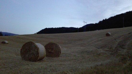Monghidoro, İtalya: La Cartiera dei Benandanti