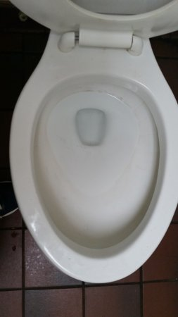 Γιόρκ, Νότια Καρολίνα: Nasty toilet - urine, feces, rings