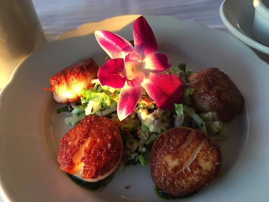 Pan Seared Lemon Scallops - Picture of Reading Room Restaurant, Bar