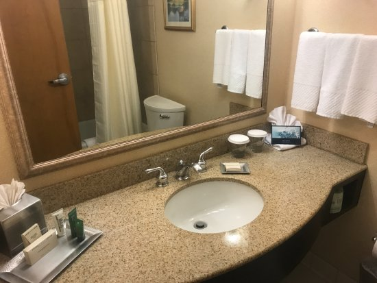 Hilton North Raleigh/Midtown: Sink area and Bathroom
