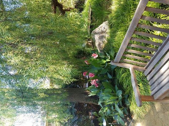 El Pueblo Inn: Lovely gardens and pool.