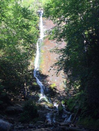 Mingo Falls 사진