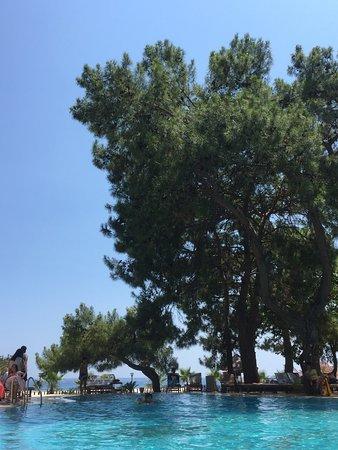 Beach Club Pinara: photo0.jpg