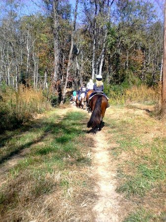 Pinnacle, NC: Bregman's Trail Riding and Stables