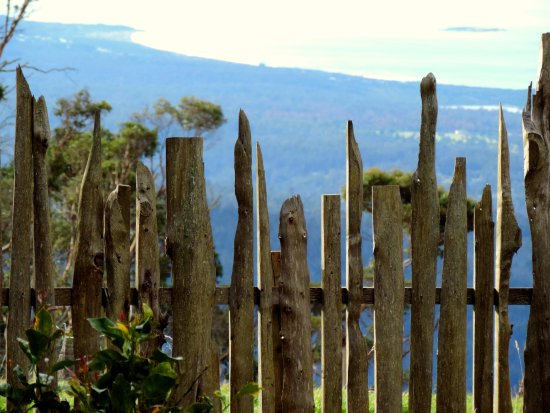 St Marys, Australia: Close up of  off-cut fence.  Each paling a statue in its own right.