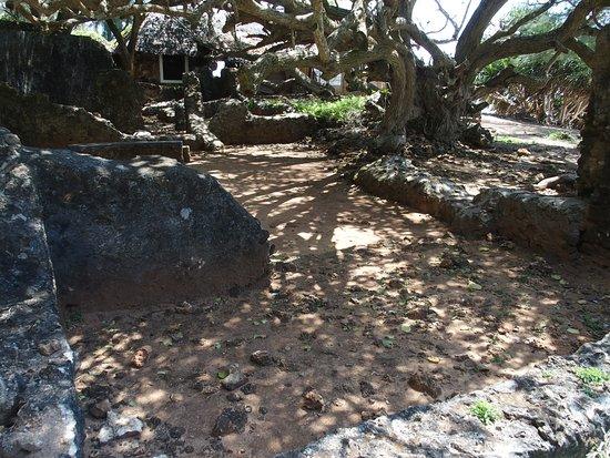 Jumba la Mtwana: 古蹟裡面