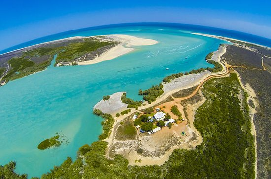 Willie Creek Pearl Farm Tour from ...