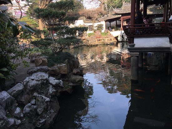 Yuyuan Garden: photo8.jpg