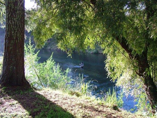 Turangi, Nueva Zelanda: Reads Ritz