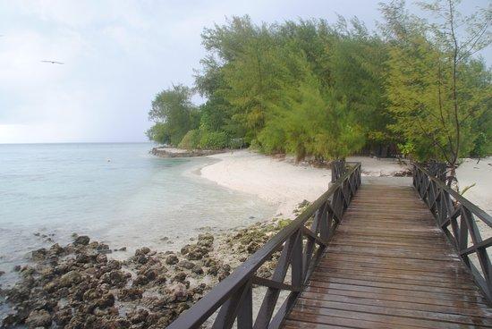 Solomon Islands: Boardwalk in Kennedy Island