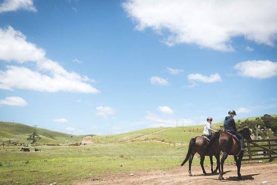 Pukeatua, Neuseeland: Let´s enjoy a horse ride together