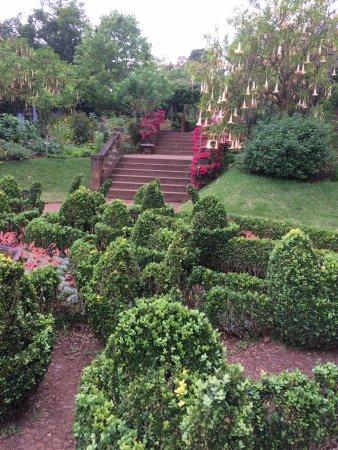 Casa Velha do Palheiro: A view in the wonderful grounds