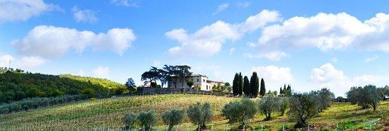 Castelnuovo Berardenga, Włochy: Fattoria di Mocenni