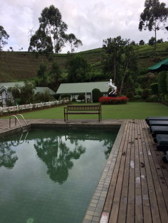 Langdale by Amaya: the amazing temperature controlled pool