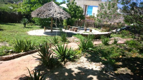 Mabwe Roots Bungalows: Ground