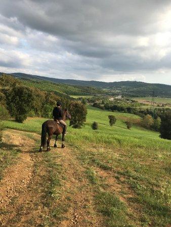 Monterotondo Marittimo, Italy: passeggiata a cavallo
