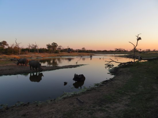 Simbambili Game Lodge: Sundowner