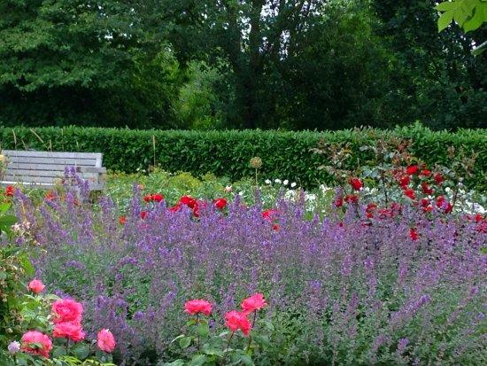 Park Der Gärten: Schöner Garten Und Freie Sitzbank