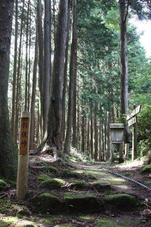 Owase, Japan: 羽後峠