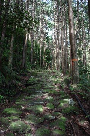 Owase, Japonia: 羽後峠道