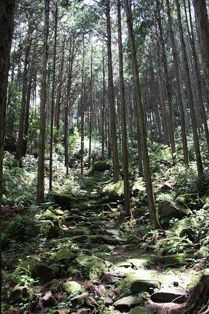 Owase, Japan: 三木峠道