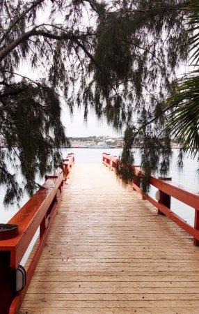 Sivananda Ashram Yoga Retreat Well Being Center: boat bridge