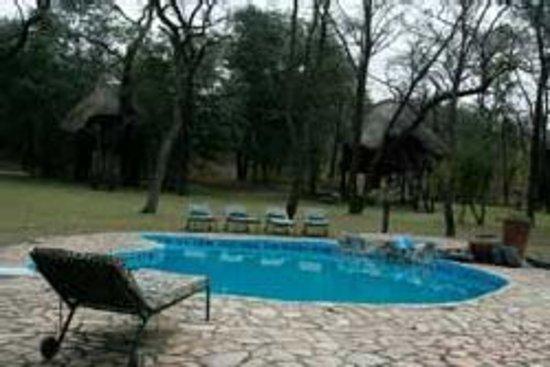 Hwange, Zimbabwe: Pool..