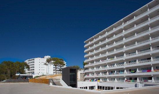 Hotel Barracuda Magaluf Reviews