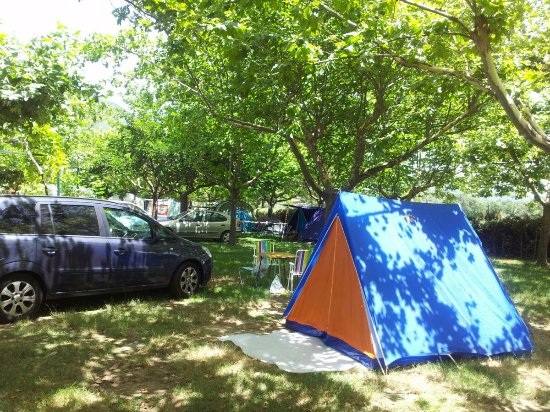 Jarandilla de la Vera, España: Zona de acampada