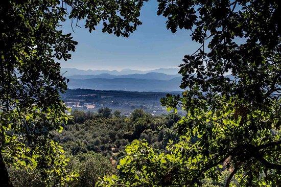 panorama dal giardino verso la valle del Tevere con vista sul ...